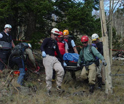 Search and Rescue Team Carrying Patient.jpg